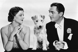After the Thin Man by W.S. Van Dyke with Myrna Loy, William Powell, the dog Asta, 1936 (b/w photo) Foto