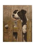 341 Giclee Print by John Silver