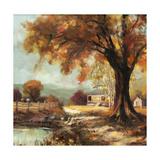Autumn Memories 2 Giclee Print by Steve Henderson