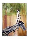 Meerkat Impressão giclée por Cherie Roe Dirksen