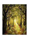 Sunlit Forest Path Impressão giclée por Cherie Roe Dirksen