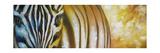 Zebra At Sunset Impressão giclée por Cherie Roe Dirksen