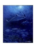 Golfinhos Impressão giclée por Cherie Roe Dirksen