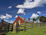 USA, Washington State, Palouse Country, Colfax, Old Red Barn with a Horse Fotografisk trykk av Terry Eggers