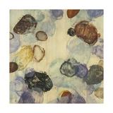 Velvet Shapes I Premium Giclee Print by Randy Hibberd