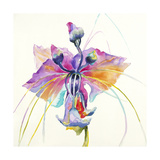 Sheer Beauty V Premium Giclee Print by Liz Jardine