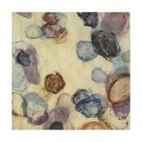 Velvet Shapes II Premium Giclee Print by Randy Hibberd