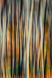 The Burn 3 Fotografisk trykk av Ursula Abresch