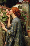 The Soul of the Rose Affiches par John William Waterhouse