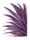 Violet Palms 1 Giclee Print by Emma Jones