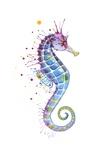 Purple Seahorse Poster von Sam Nagel