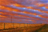 Canada, Alberta, Grande Prairie. Rural landscape at sunset. Fotoprint van Jaynes Gallery