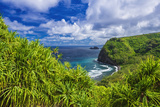 Pololu Valley and beach through hala trees, North Kohala, The Big Island, Hawaii, USA Reproduction photographique par Russ Bishop