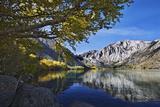 USA, California, Sierra Nevada Range. Convict Lake in autumn. Fotoprint van Jaynes Gallery