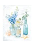 Beach Cottage Florals II Premium Giclee Print by Danhui Nai