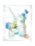 Beach Cottage Florals III Premium Giclee Print by Danhui Nai