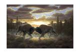 Buffalo Giclee Print by R.W. Hedge