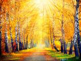 Autumn. Fall. Autumnal Park. Autumn Trees and Leaves in Sun Rays. Beautiful Autumn Scene Fotografisk trykk av Subbotina Anna