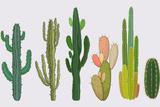 Cactus Collection in Vector Illustration Giclee-trykk av Roberto Chicano