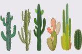 Cactus Collection in Vector Illustration Posters by Roberto Chicano