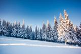 Fantastic Winter Landscape. Blue Sky. Carpathian, Ukraine, Europe. Beauty World. Photographic Print by Leonid Tit