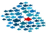 One Fish Swim In Opposite Direction, Dare To Be Different Concept Plakater af  mypokcik