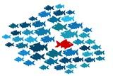 One Fish Swim In Opposite Direction, Dare To Be Different Concept Kunstdrucke von  mypokcik