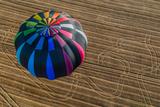 One Hot Air Balloon Gathering in the Countryside of France Fotografisk trykk av  OSTILL