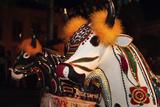 Bumba Meu Boi Celebration Every Solstice Of June In Center Historic City Fotografisk trykk av  OSTILL