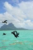 Bora Bora Fotografie-Druck von  Styve