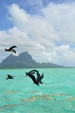 Bora Bora Lámina fotográfica por  Styve