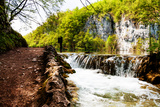 Beaten Track near A Forest Lake and Waterfall in Plitvice Lakes National Park, Croatia Photographic Print by  Lamarinx