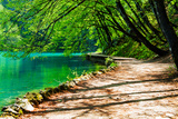 Path near A Forest Lake in Plitvice Lakes National Park, Croatia Photographic Print by  Lamarinx