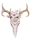 Bohemian Deer Skull - Western Mammal Watercolor Giclée-Premiumdruck von  Kris_art