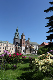 Wawel Hill and the Royal Castle in Krakow Reproduction photographique par  wjarek