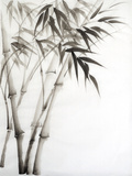 Watercolor Painting Of Bamboo Posters av  Surovtseva