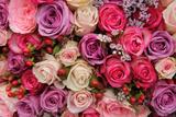 Pastel Wedding Flowers Fotografie-Druck von  Studio Porto Sabbia