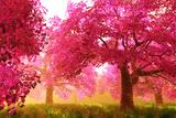 Mysterious Japanese Cherry Blossom Tree Sakura Render Kunst von  boscorelli