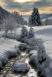 Winter Photographic Print by  Hasenonkel