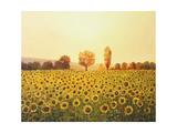 Memories Of The Summer Kunstdrucke von  kirilstanchev