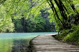 Wooden Path Near A Forest Lake Poster von  Lamarinx