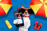 Dog Summer Beach Selfie Valokuvavedos tekijänä Javier Brosch