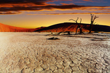 Namib Desert, Sossusvlei, Namibia Fotografisk trykk av  DmitryP