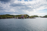 Houses and Small Harbor on Island in Northern Norway Photographic Print by  Lamarinx