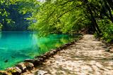 Path near A Forest Lake with Fish in Plitvice Lakes National Park, Croatia Fotografisk trykk av  Lamarinx