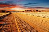Kalahari Desert, Namibia Fotografisk trykk av  DmitryP