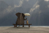 Elephant And Dog Sit Under The Rain Posters by  Mike_Kiev