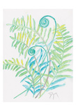 Floral Fern II Plakat av Beverly Dyer