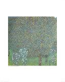 Roses under the Trees Affiches par Gustav Klimt