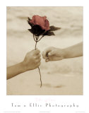 The Rose Affiches